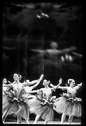 San Fransisco Ballet dancers, Nutcracker Suite
