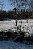 Snow covered Kilbogget Park in suburban in Dublin Ireland