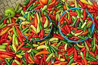 Indonesie. Sulawesi (Celebes). Pays Toraja, Tana Toraja. Marche de Rantepao. Piments. // Indonesia. Sulawesi (Celebes Island). Tana Toraja. Rantepao market. Chilli peppers