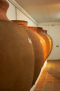 amphora shaped earthenware tanks adega jose de sousa rosado fernandes alentejo portugal