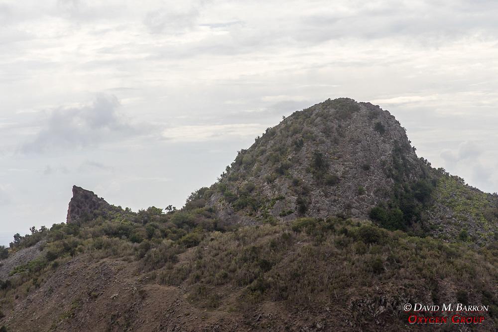 Whale Mountain