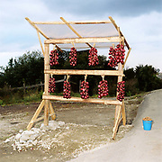 A roadside stall selling strings of red onions and walnuts in rural Romania