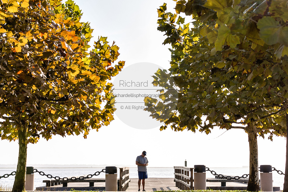 A man texting on his mobile phone in Waterfront Park on a foggy morning in historic Charleston, SC.