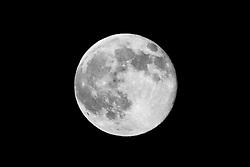 Super Moon as seen in Hamden CT on 12 July 2014. B&W version. Camera: Nikon Df, image cropped.