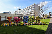 Flowers are arranged in the shape of letters outside St Thomas' Hospital in central London as British Prime Minister Boris Johnson is in intensive care fighting the coronavirus in London, Tuesday, April 7, 2020. Johnson was admitted to St Thomas' hospital in central London on Sunday after his coronavirus symptoms persisted for 10 days. Having been in the hospital for tests and observation, his doctors advised that he be admitted to intensive care on Monday evening. (Photo/Vudi Xhymshiti)