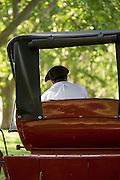 Back view of gaucho on horse drawn cart, Estancia La Bamba De Areco, Pampas, Argentina, South America