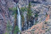 Canyon walls with pine trees, Lytton, British Columbia, Canada