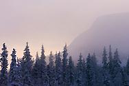 Landscape, Vindelfjallen National Park, Vasterbotten, Lapland, Sweden.