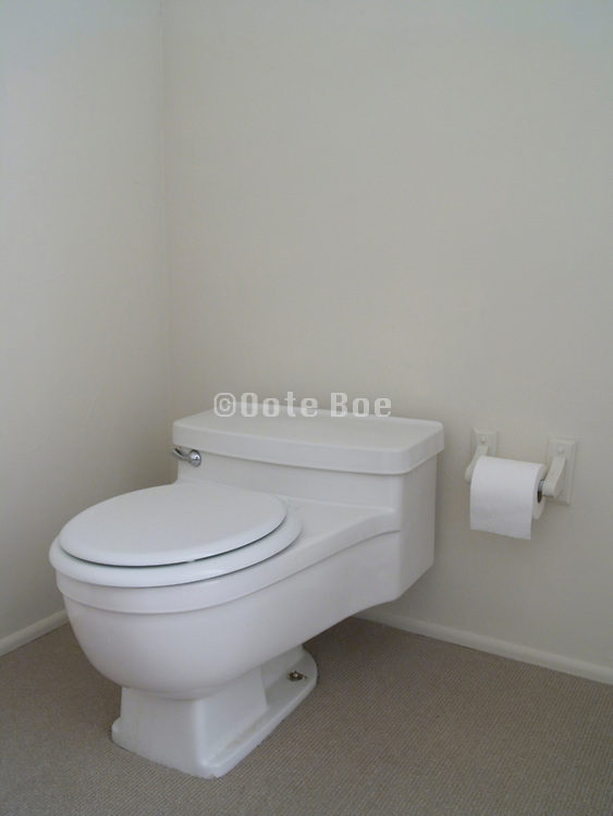 modern water saving toilet with closed seat cover