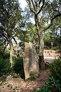 Neolithic standing stone, Menhir d'en Llach, Massís de les Cadiretes, Catalonia, Spain.