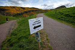 Holyrood Park earlier this afternoon.