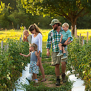 Two Dog Farms owner Van Killen, right, holds his son Ivan while walking through his field with his wife Dorhy, daughter Hazel youngest son Linden in Flora, Mississippi. Two Dog farms grows about 50 variety of vegetables on 25 acres and delivers to local markets and restaurants. Nathan Lambrecht/Journal Communications