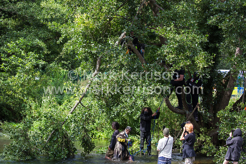Denham, UK. 24 July, 2020. A branch of an ancient alder tree cut by a tree surgeon working with the National Eviction Team falls into the river Colne from above environmental activists from HS2 Rebellion trying to protect it from destruction in connection with works for the HS2 high-speed rail link in Denham Country Park. 2020 is the Year of the Tree.