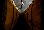 Patos de Minas_MG, Brasil..Cachacaria em Patos de Minas que fabrica aguardente para exportacao. Na foto toneis de cachaca...Cachaca factory in Patos de Minas, which manufactures cachaca for export. In the Picture barrels of cachaca...Foto: LEO DRUMOND / NITRO