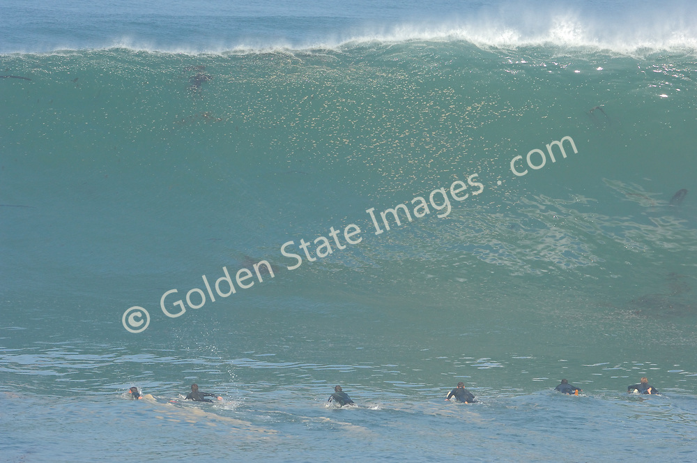 This wave is every bit as big as it appears - likely a 30 to 35 foot face. The lineup gets caught short as this monster appears out of nowhere.