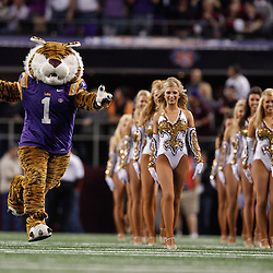 Jan 7, 2011; Arlington, TX, USA; LSU Tigers mascot Mike the Tiger performs with the Golden Girls dance team prior to kickoff of the 2011 Cotton Bowl against the Texas A&M Aggies at Cowboys Stadium.  Mandatory Credit: Derick E. Hingle
