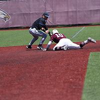 Baseball: Trinity University (Texas) Tigers vs. Aurora University Spartans