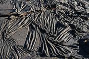 Lava on Sullivan Bay<br /> a recent (1897) pahoehoe lava flow<br /> Sullivan Bay <br /> Santiago <br /> Galapagos<br /> Ecuador, South America