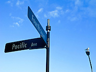 The corner of 4th and Pacific street signs are accompanied by a seagull atop a street lamp in Bremerton, WA, USA