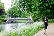 In Utrecht rent een meisje door het park Lepelenburg.<br /> <br /> In Utrecht a girl is running in park Lepelenburg.
