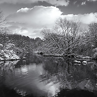 """""""Glorious Winter Day"""" mono<br /> <br /> A glorious winter day on the Huron River in Ann Arbor Michigan! Beautifully done in black and white!"""