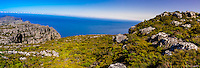 Panoramic view  from top of Table Mountain, Table Mountain National Park, Cape Town, South Africa.