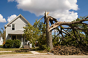 18 AUGUST 2020 - CEDAR RAPIDS, IOWA: A destroyed tree in front of home in Cedar Rapids. Cedar Rapids was the state's hardest hit city by the derecho that roared across Iowa last week. City officials said the damage left by the derecho was more extensive than the 2008 flood that destroyed much of its downtown. City residents are reporting that almost every home was damaged in the storm, many businesses were closed, and up to half of the city's tree canopy was destroyed. A week after the storm, more than 40,000 homes were still without power. A spokesman for Alliant Energy said the utility has replaced as many power poles in one week that they normally replace in 8 months. On Monday, President Trump approved a $4 billion emergency declaration for Iowa to aid in derecho recovery.    PHOTO BY JACK KURTZ