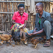 CAPTION: Stanislas and his new wife Clementine, whom he married in 2014, feed their chickens, some of their smaller animals. Through the programme, Stanislas received training and guidance on how to care for and rear such animals, manage productivity and direct the produce (milk, eggs and meat) into profitable economic activity. LOCATION: Rushikiri Village, Kimuna Cell, Rusatira Sector, Huye District, South Province, Rwanda. INDIVIDUAL(S) PHOTOGRAPHED: Clementine Nibagwire (left) and Stanislas Iriboneye (right).