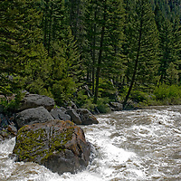The Gallatin River, high with spring snow melt, flows past House Rock in Gallatin Canyon, Gallatin National Forest, near Bozeman, Montana.