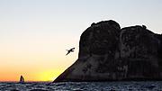 2014 Ilhabela Sailing Week