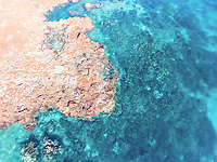Aerial view taken at low tide of the coral reef surrounding Lady Elliot Island, Great Barrier Reef, Queensland, Australia