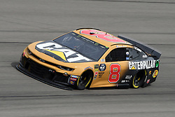 March 1, 2019 - Las Vegas, NV, U.S. - LAS VEGAS, NV - MARCH 01: Daniel Hemric (8) Richard Childress Racing (RCR) Chevrolet Camaro ZL1 drives through turn four during practice for the Monster Energy NASCAR Cup Series 22nd Annual Pennzoil 400 on March 1, 2019, at the Las Vegas Motor Speedway in Las Vegas, Nevada. (Photo by Michael Allio/Icon Sportswire) (Credit Image: © Michael Allio/Icon SMI via ZUMA Press)