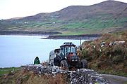 Hogg's Head, Waterville, County Kerry.<br /> Photo: Mary Susan MacMonagle<br /> macmonagle.com