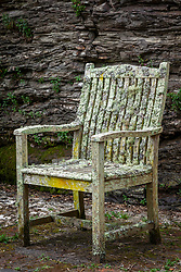 Wooden chair covered with lichen