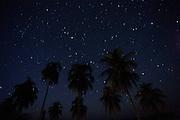 Aquidauana_MS, Brasil...Estrelas em uma paisagem na fazenda Rio Negro no Pantanal...The stars in a landscape in Rio Negro farm in Pantanal...Foto: JOAO MARCOS ROSA / NITRO