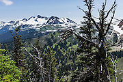 Hiking along the High Note Trail on Whistler Mountain in the Fitzsimmons Range, see Mount Iago, Mount Fitzsimmons (2610 m), Overlord Mountain, Overlord Glacier, and Fissile Peak (left to right) in the Coast Range, British Columbia, Canada.