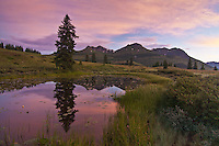 Sunrise reflections in a alpine tarn on Molas Pass.  With Turks Head and Grand Turk in the distance.  San Juan Mountains, Colorado, USA.