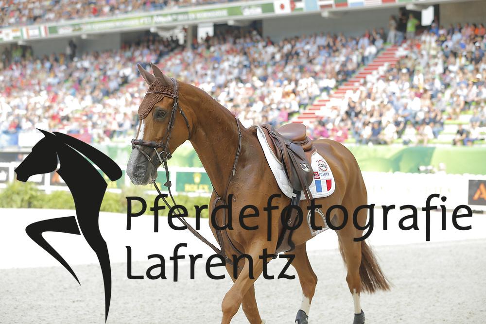 Leprevost, Penelope, Flora de Mariposa<br /> Normandie - WEG 2014<br /> Springen - Finale III<br /> © www.sportfotos-lafrentz.de/ Stefan Lafrentz