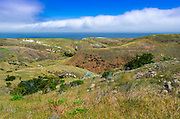 Scorpion Ranch, Santa Cruz Island, Channel Islands National Park, California USA