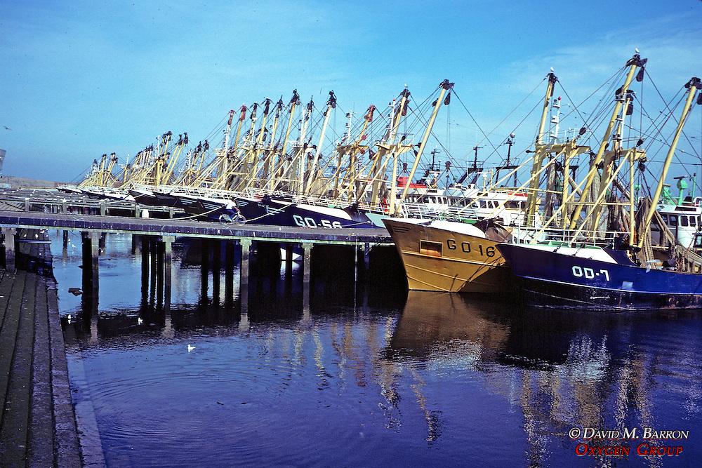Fishing Vessels In Port