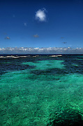Sea and Sky - Goldene - Jamaica