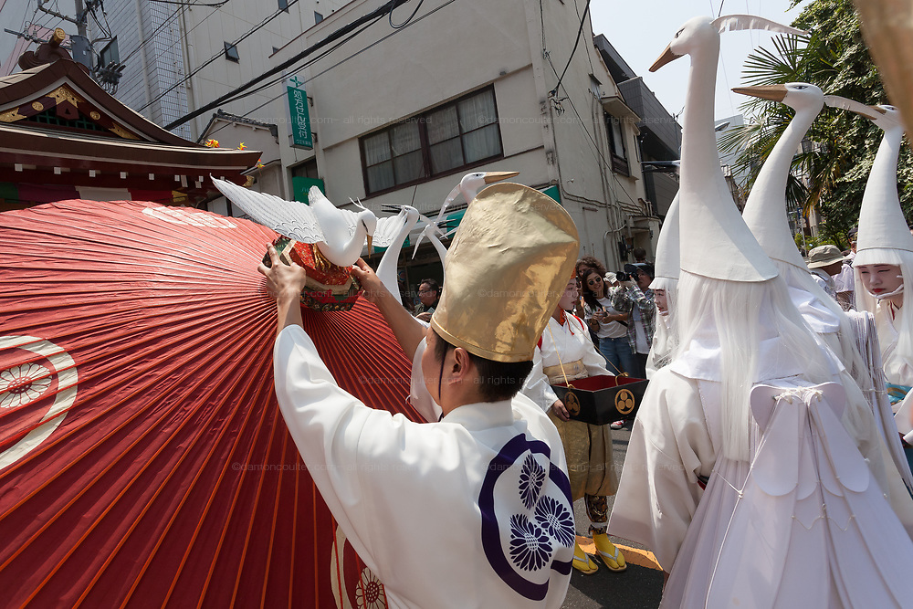 A priest puts a heron model on top of a paper umbrella as young women dressed as herons take part in the Daigyoretsu or Grand on  first day of the three-day Sanja Matsuri, Asakusa, Tokyo, Japan. Friday May 18th 2018. The Sanja matsuri, or festival, takes place over the third weekend of May in the streets around the famous Senso-ji Temple. It lis one of the biggest festivals in Japan and lasts for three days  (May 18th to May 20th) with parades of large mikoshi, or portable shrines, carried around the streets by crowds of supporters