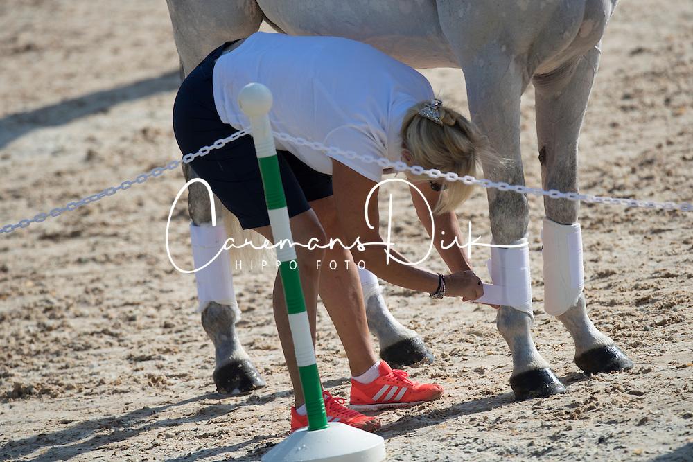 Tattersall Gemma, GBR, Quicklook V<br /> Olympic Games Rio 2016<br /> © Hippo Foto - Dirk Caremans<br /> 05/08/16