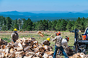 Left to Right: Daryl Domingo, Crew Member Crew 631 stands out of the way while Ellsworth Hamilton, Crew Member Crew 631 rolls a log towards the splitter, Tyron Tsosie, Crew Leader Crew 632 tosses a split log, and Gregori Yestawa, Crew Member crew 632, positions a log in the splitter.  All crew members are from the Ancestral Lands Conservation Corps, Hopi Office.