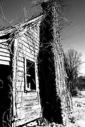 The great thing about Road Trips are the places you find along the way. This old farm house was a hike to get to as it was almost ready to fall down. RAW to Jpg