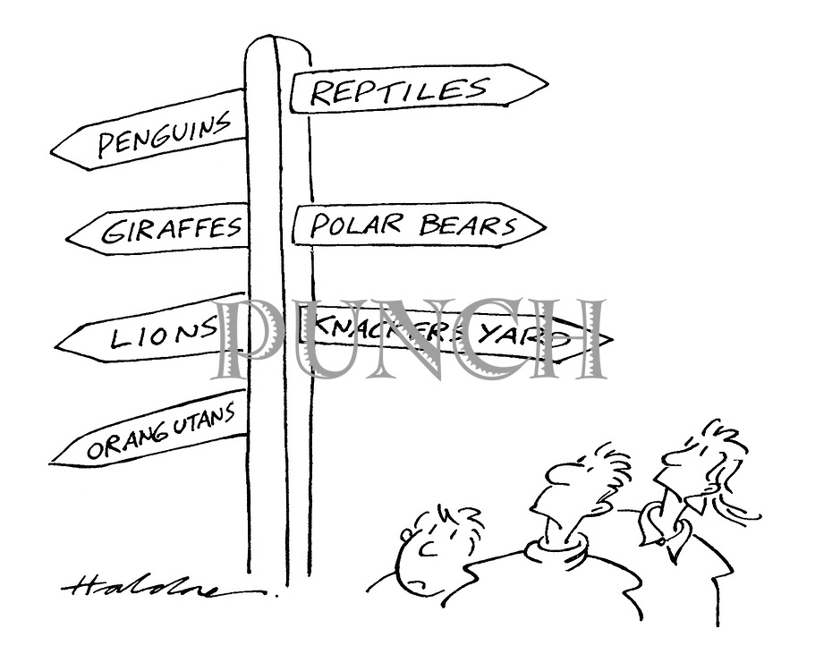 (Visitors to a zoo read a signpost with signs pointing to the penguins, reptiles, giraffes, polar bears, lions, orangutans - and knackers yard)