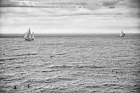 Black and white view of swimmers and sailboats luxuriating in the Mediterranean Sea, Nice, France.