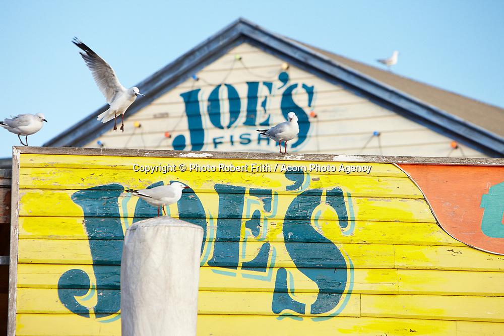 Joe's Fish Shack at Fremantle Fishing Boat Harbour