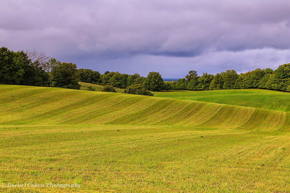 """""""Farms of Charlevoix""""<br /> <br /> Scenic rural farm in Charlevoix Michigan!Rolling hills and lines!!<br /> <br /> Landscapes by Rachel Cohen"""