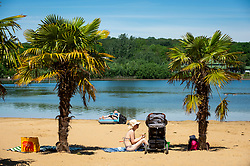 © Licensed to London News Pictures. 14/06/2021. LONDON, UK.  People near palm trees sunbathe on the beach at Ruislip Lido in north west London.   The forecast is for the temperature to rise to 28C, the hottest day of the year so far.  Photo credit: Stephen Chung/LNP